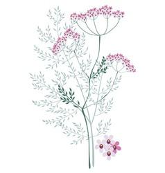 Valerian meadow plant vector