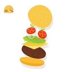Hamburger sandwich ingredients structure setup vector
