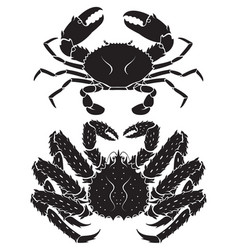 Alaskan king crab vector