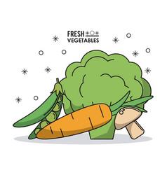 Colorful poster fresh vegetables peas mushrooms vector