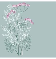 flowering meadow plant vector image