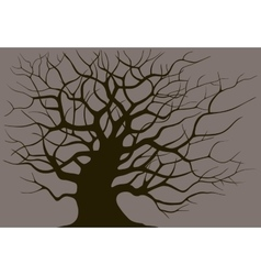 Silhouette branching of an old tree vector