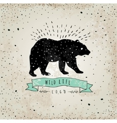 Vintage label bear design for t-shirt handmad vector