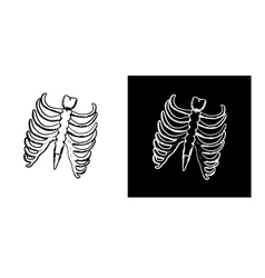 X-ray and skeleton of human rib cage vector image