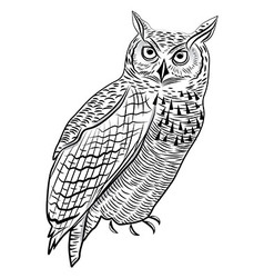 Owl bird as halloween symbol vector image