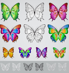 Set of different colored butterflies vector