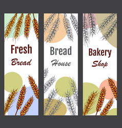 Bakery label organic eco brea vector