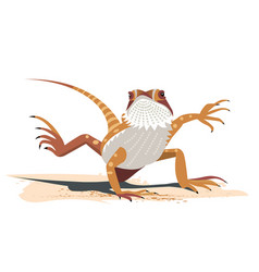 kung fu of the bearded dragon vector image