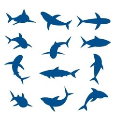 Set of big sharks blue silhouettes vector image