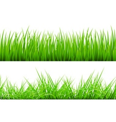 2 backgrounds of green grass isolated on white vector