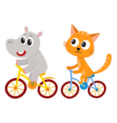 cute little hippo and cat kitten characters vector image