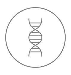 Dna line icon vector