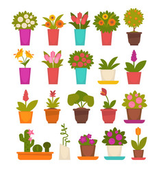 assortment of different flowers vector image vector image