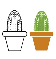 Cactus in a pot vector
