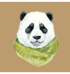 Panda bear wearing a scarf vector image