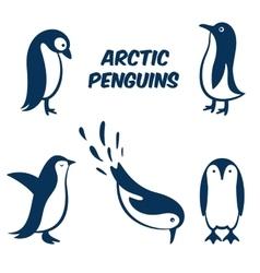 Penguin egg symbol icon vector