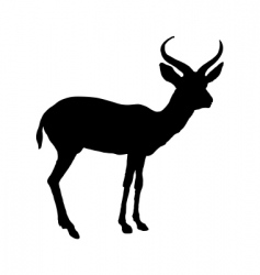 Black antelope vector