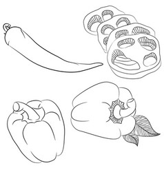 line art various peppers vector image