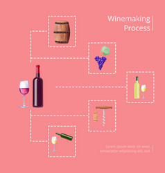 Winemaking process on red vector
