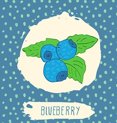 Blueberry hand drawn sketched fruit with leaf on vector