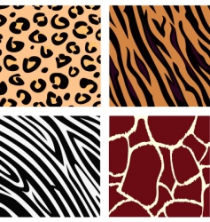 animal patterns vector image