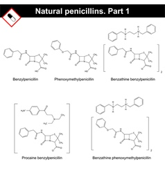 Chemical structures of natural penicillins vector