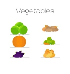 Foods market vegetables flat icons set vector image vector image