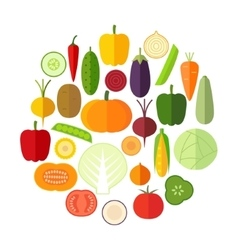 Set of fresh healthy vegetables made in flat style vector image