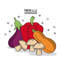 Colorful poster fresh vegetables eggplant peppers vector