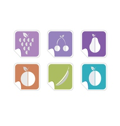 fruit color icon vector image