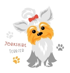 Funny yorkshire terrier dog sitting vector