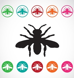 Insects bee vector image