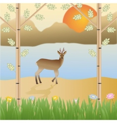 Roe deer in the wild mountains sun flowers vector image