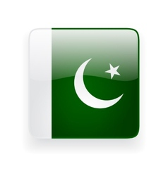 Square icon with flag of Pakistan vector image vector image