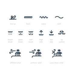 Surf school icon set low high tide rip current vector image