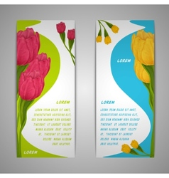 Tulip flowers banners vector image vector image