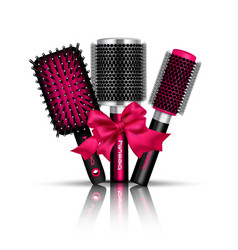 hair brush composition vector image vector image