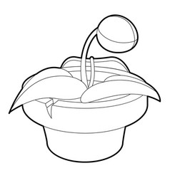 Plant in pot icon outline style vector