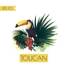 toucan and tropical plants vector image