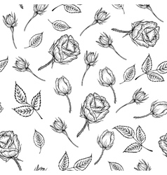 Vintage pattern of monochrome rose vector image vector image