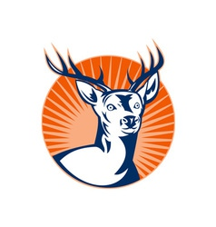 Stag deer or buck with sunburst vector