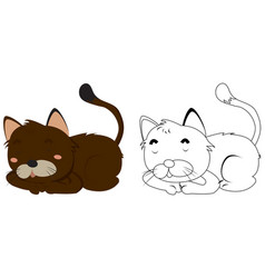 animal outline for kitten vector image vector image