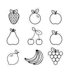 Figure natural fruit background icon vector