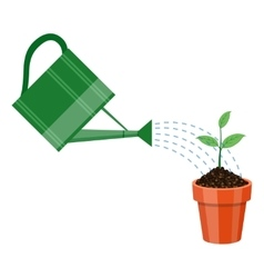 Watering can and plant in the pot vector image vector image