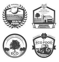 Vintage natural healthy emblems collection vector
