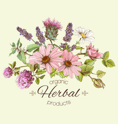 Herbal composition vector
