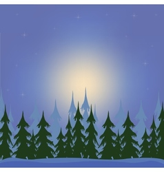 Night in wood vector image vector image