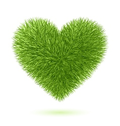 Grass heart symbol vector