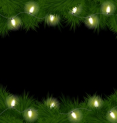 Christmas lights on pine isolated on black vector image vector image