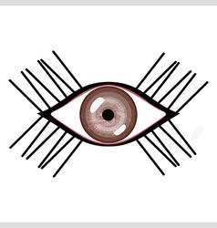 Human eye with eyelashes vector